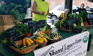 Shared-Legacy-Farms-table-at-the-Toledo-Farmers-Market-jpg